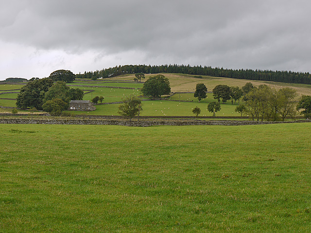 Fields north of Crag Lane