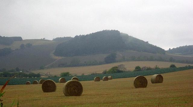Round bales, Ballindean
