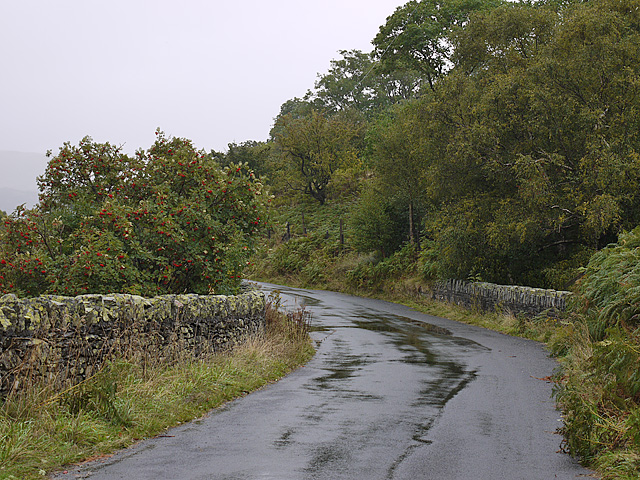 Bridge over Guerness Gill