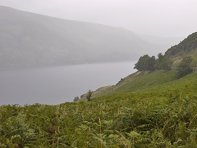 Haweswater hillside north of Whiteacre Crag