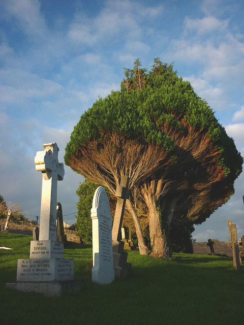 In Warton graveyard