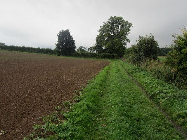 Footpath west of Follifoot