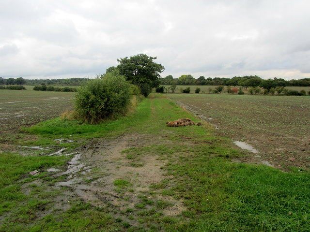Countryside opposite Haggs Farm