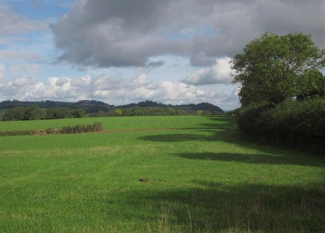 Field by Heathfield Road