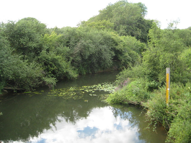 River Arun at Alfoldean Bridge (2)