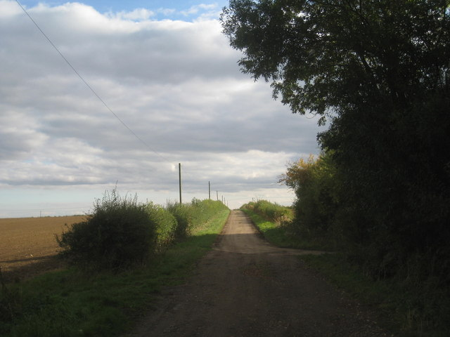 Lane from Fen Farm