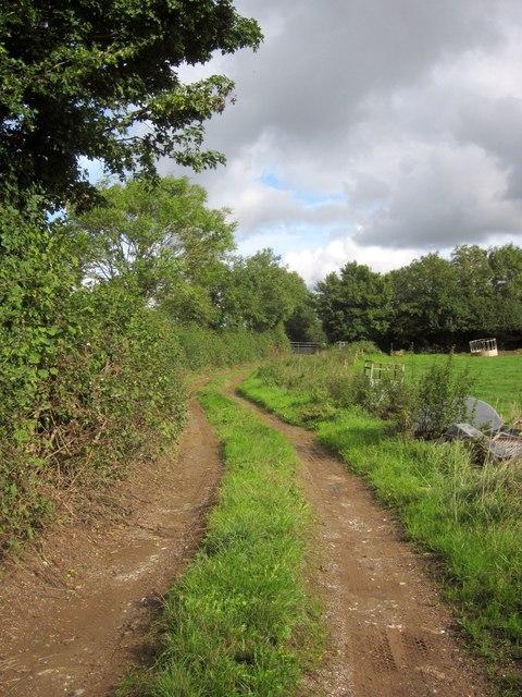 Track from Heathfield Road
