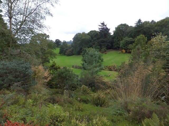 The lower valley of Dartington Hall Gardens