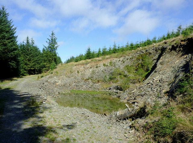 Old forestry quarry in Coed Nantyrhwch, Powys