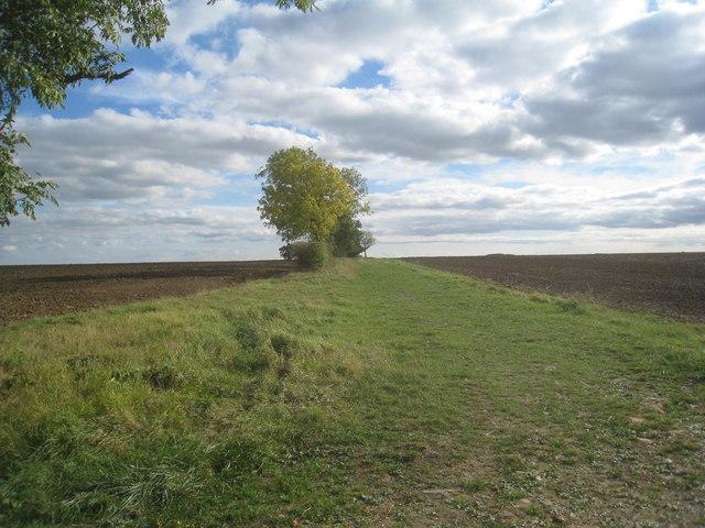 Long Close Lane