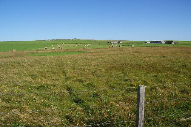 Farmland near Marwick Head