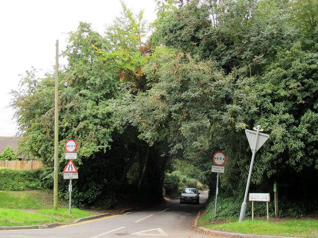 Hilltop Lane, Chaldon