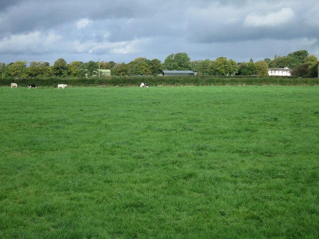 Lowland Ireland