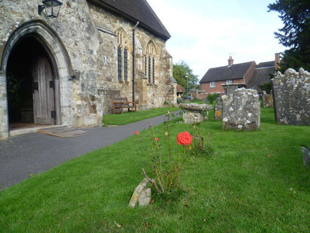 Rose by the south porch of All Saints Church, Biddenden