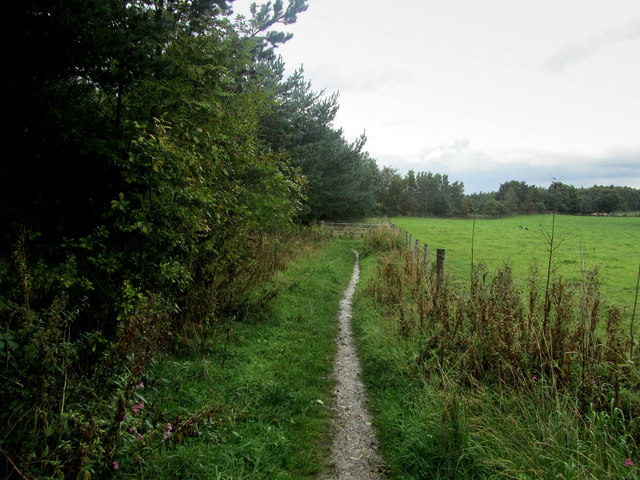 Path on Follifoot Ridge