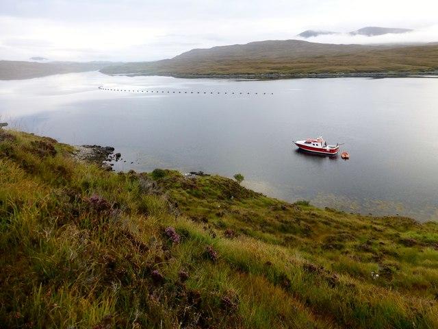 Enchanted Isle On Loch Seaforth/Loch Shiphoirt