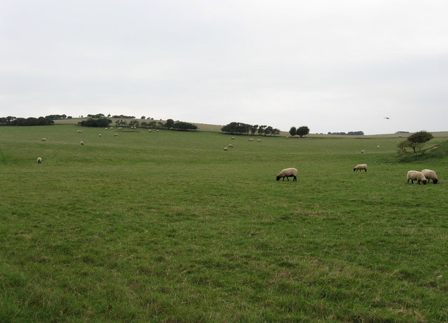Shepherds Green (2)