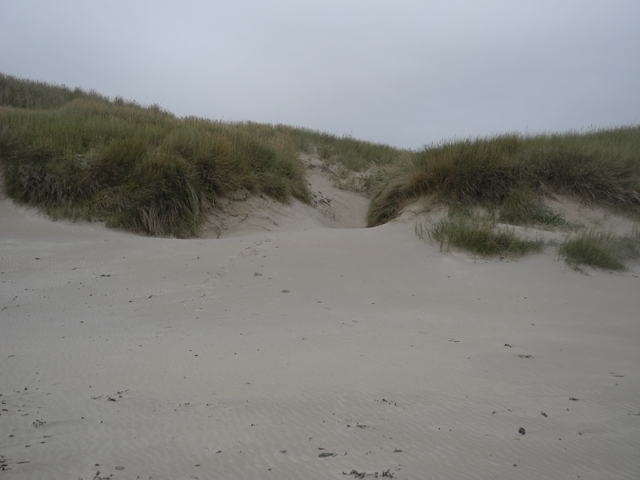 Dunes on beach south of Keiss
