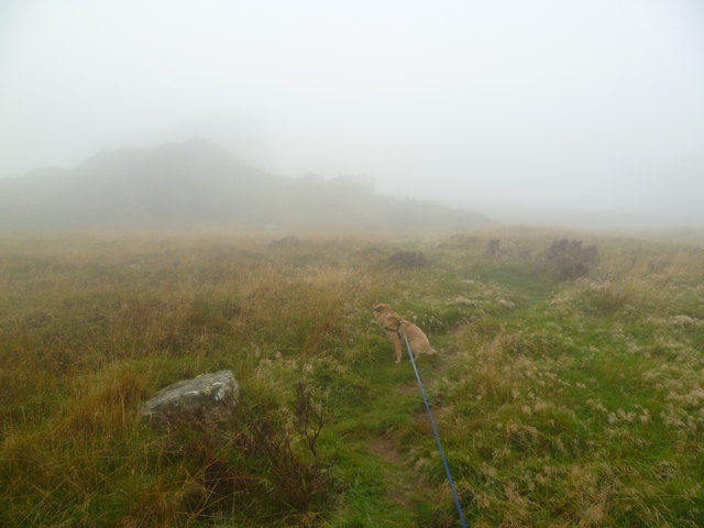 Misty Morning, Dropping Crag