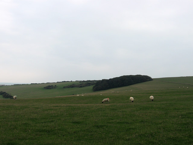 Walls Brow (Site of Medieval Settlement of Poynings Town)