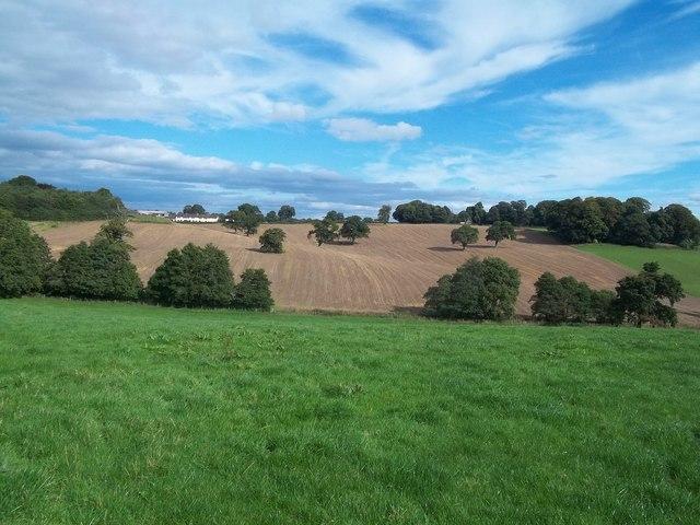 Farmland near Osmaston