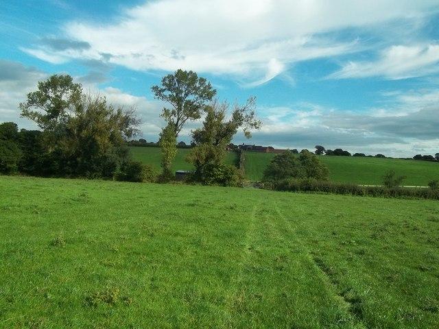 Bridleway Approaching War Farm