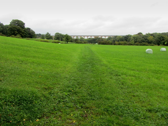 Bridleway in the Crimple Valley