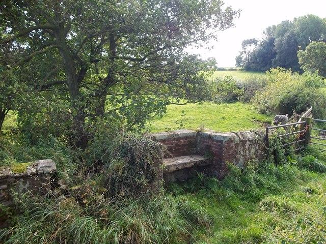A Quaint Stone Bench