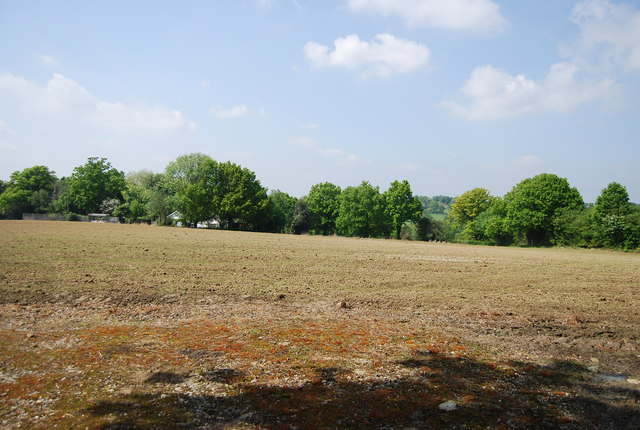 Field by Stockland Green Rd