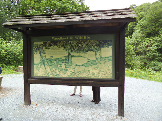 Information board by the Strid