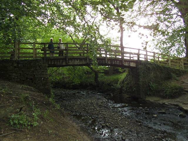 Footbridge in Strid Wood