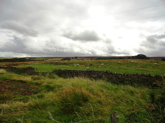 View south from the access road to the Derwent Reservoir
