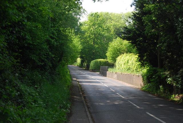 Speldhurst Hill