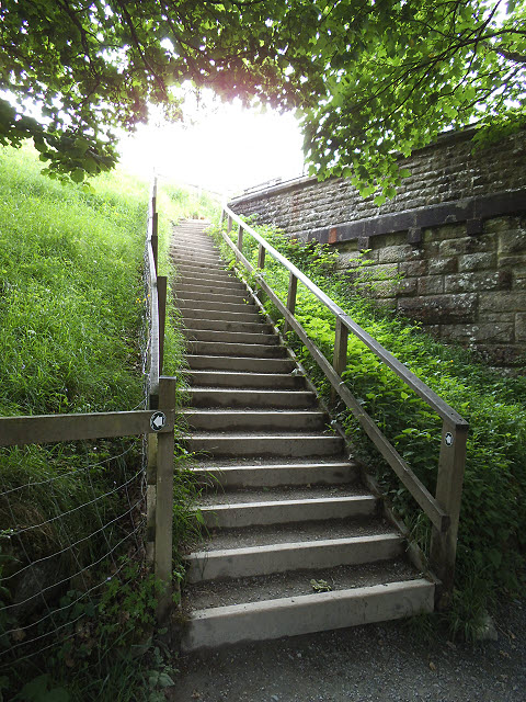 Steps to the Nidd Aqueduct