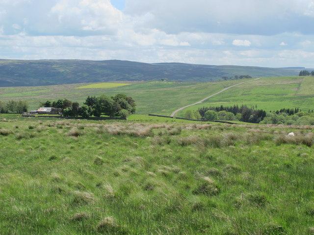 Moorland northwest of Craig