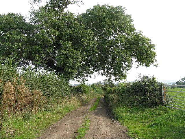Farm track at Awre