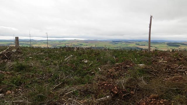 357m summit, Edgarhope Wood