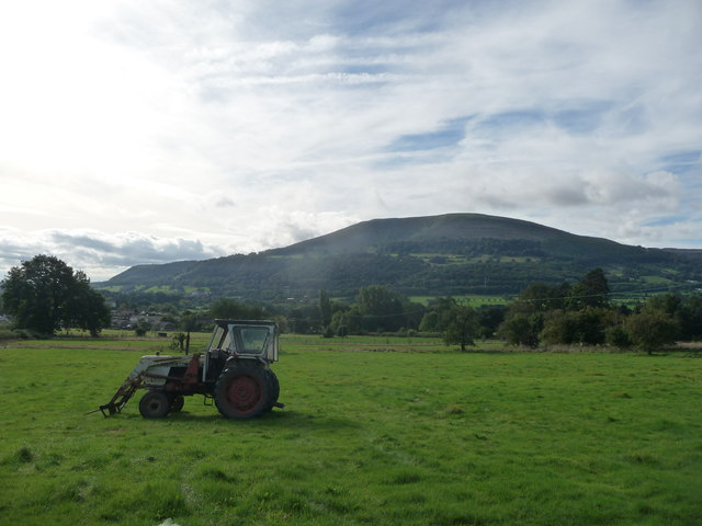 View across an old orchard near Pentre Cottage towards the Blorenge