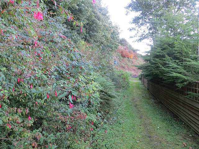 Path, Kilchattan Bay
