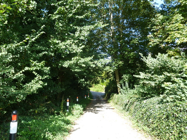 Rush hour in Buckland Ripers (2)