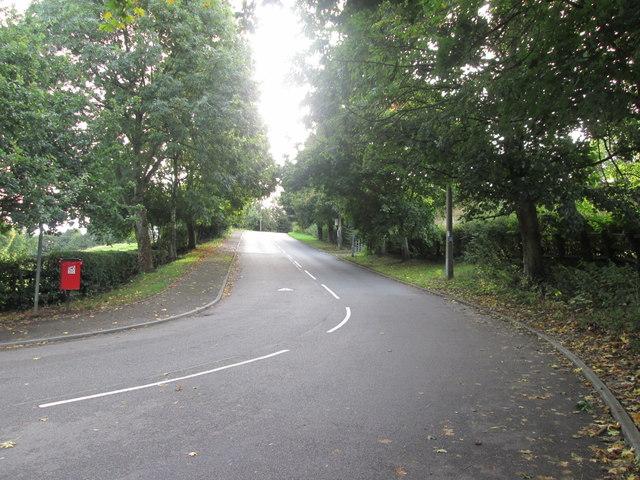 Ballfield Lane