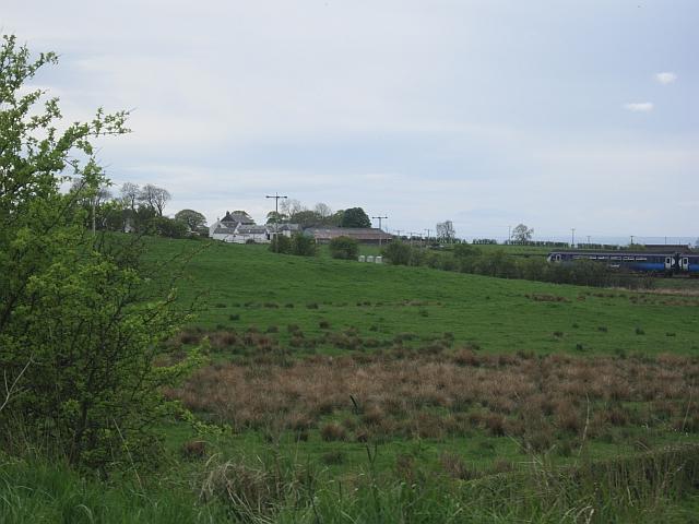 Wet pasture near Dunlop