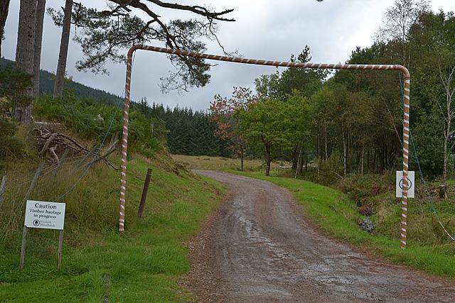 Forestry road, Fassfern