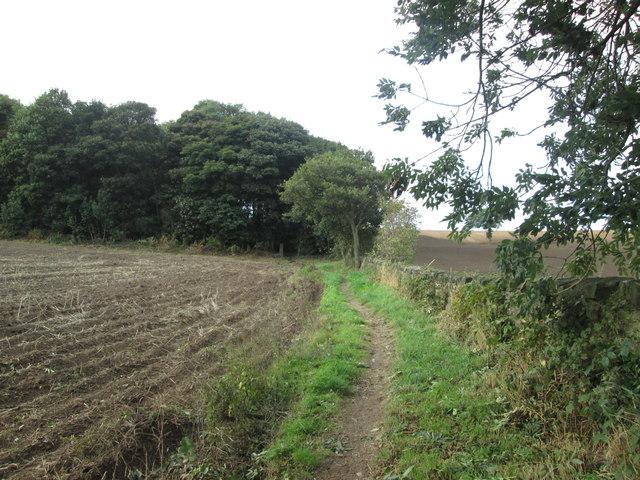 Footpath towards Wheatley Wood