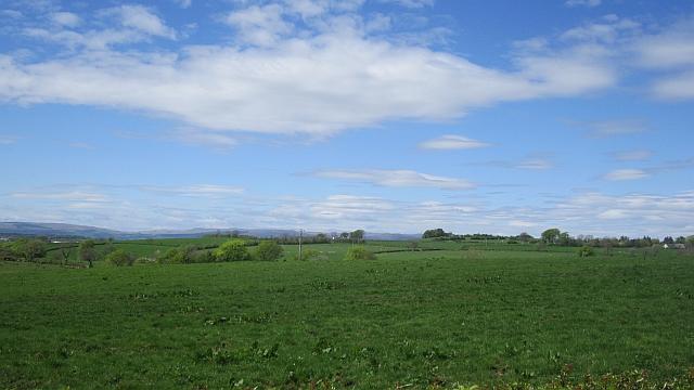 Pasture, Gunshill