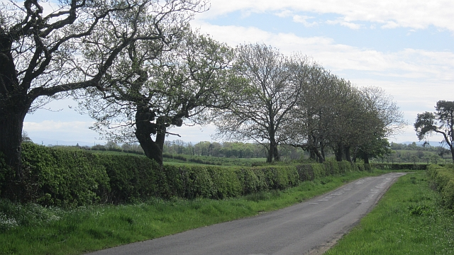 Minor road, Bloakhillhead