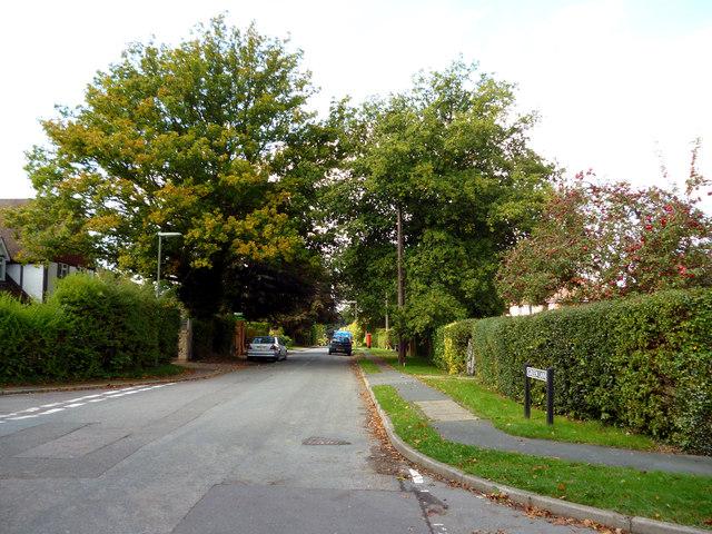 Lower Kingswood:  Green Lane