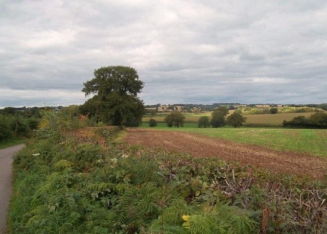 Rural Scene to the North of Ednaston