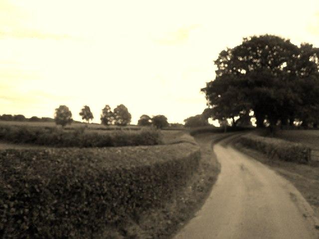 Yeldersley Lane