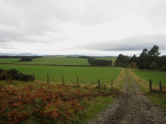 Track over Catton Ridge